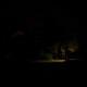 Nightly_Newell_01